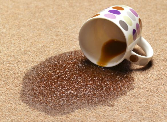 carpet coffee stains